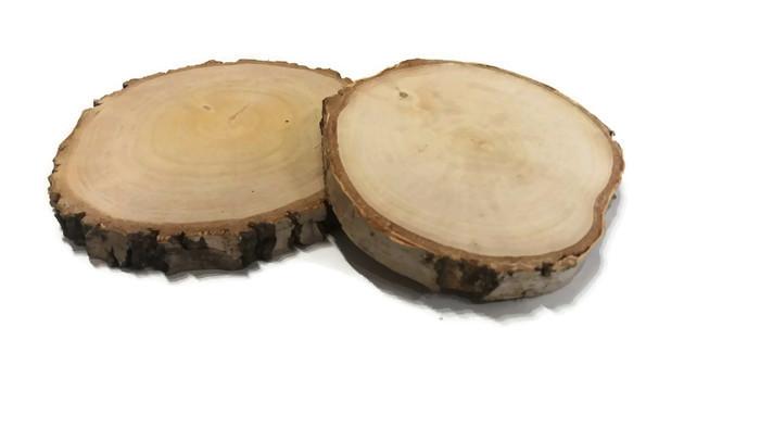 Plastry drewniane krążki drewna brzoza 14-17cm