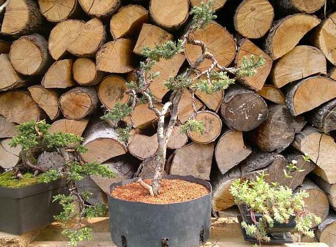 Euro-Akadama - Zem pre bonsai 20 kg / 40l - 2-6 mm