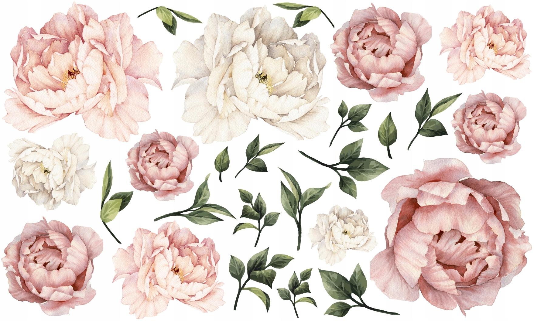 PEONIE kwiaty PIWONIE naklejki NA ŚCIANĘ 100x60 XL