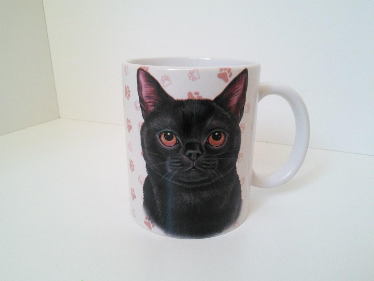 Kot Czarny