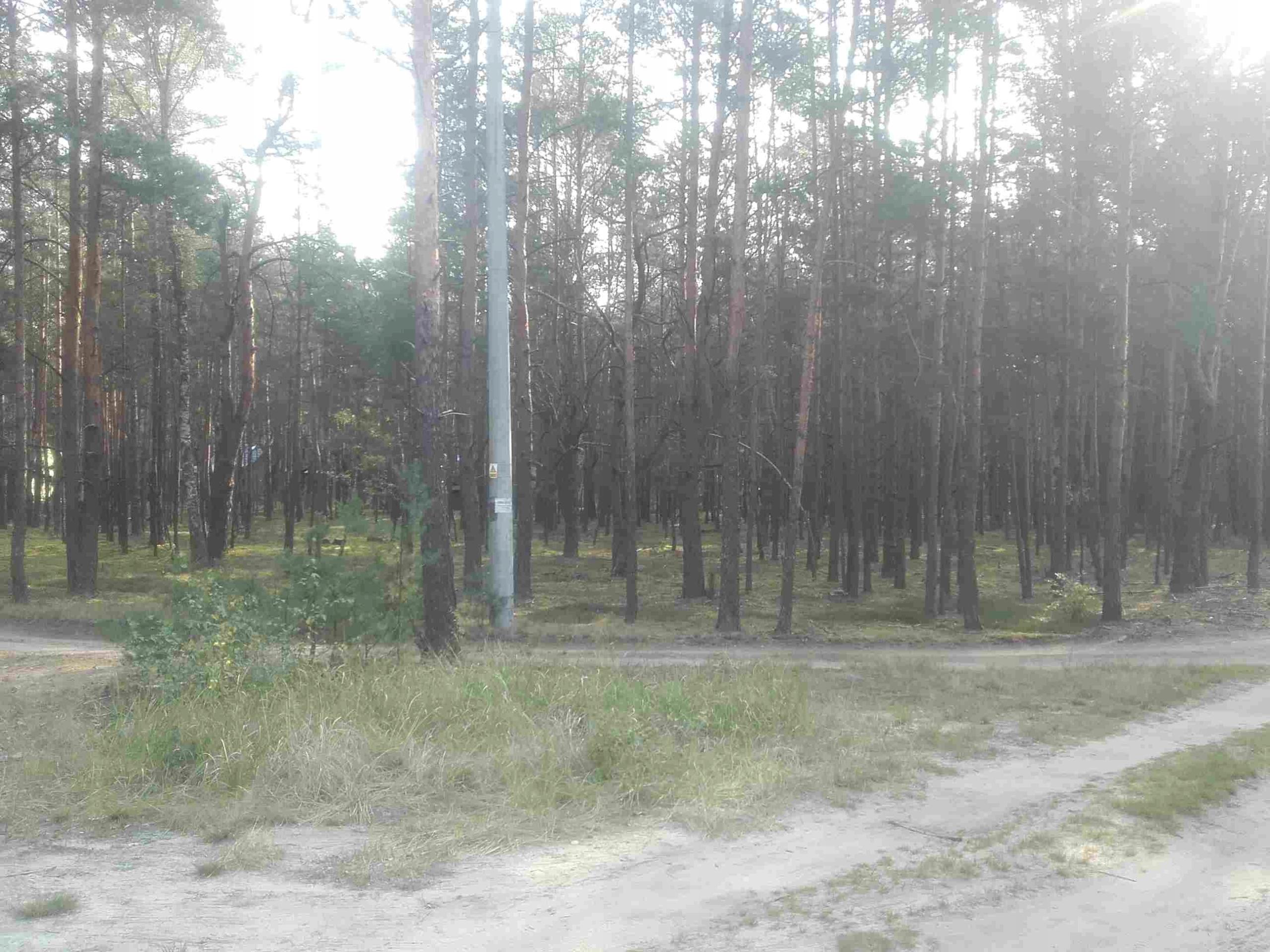 Działka leśna / budowlana Popowo Huta Podgórna