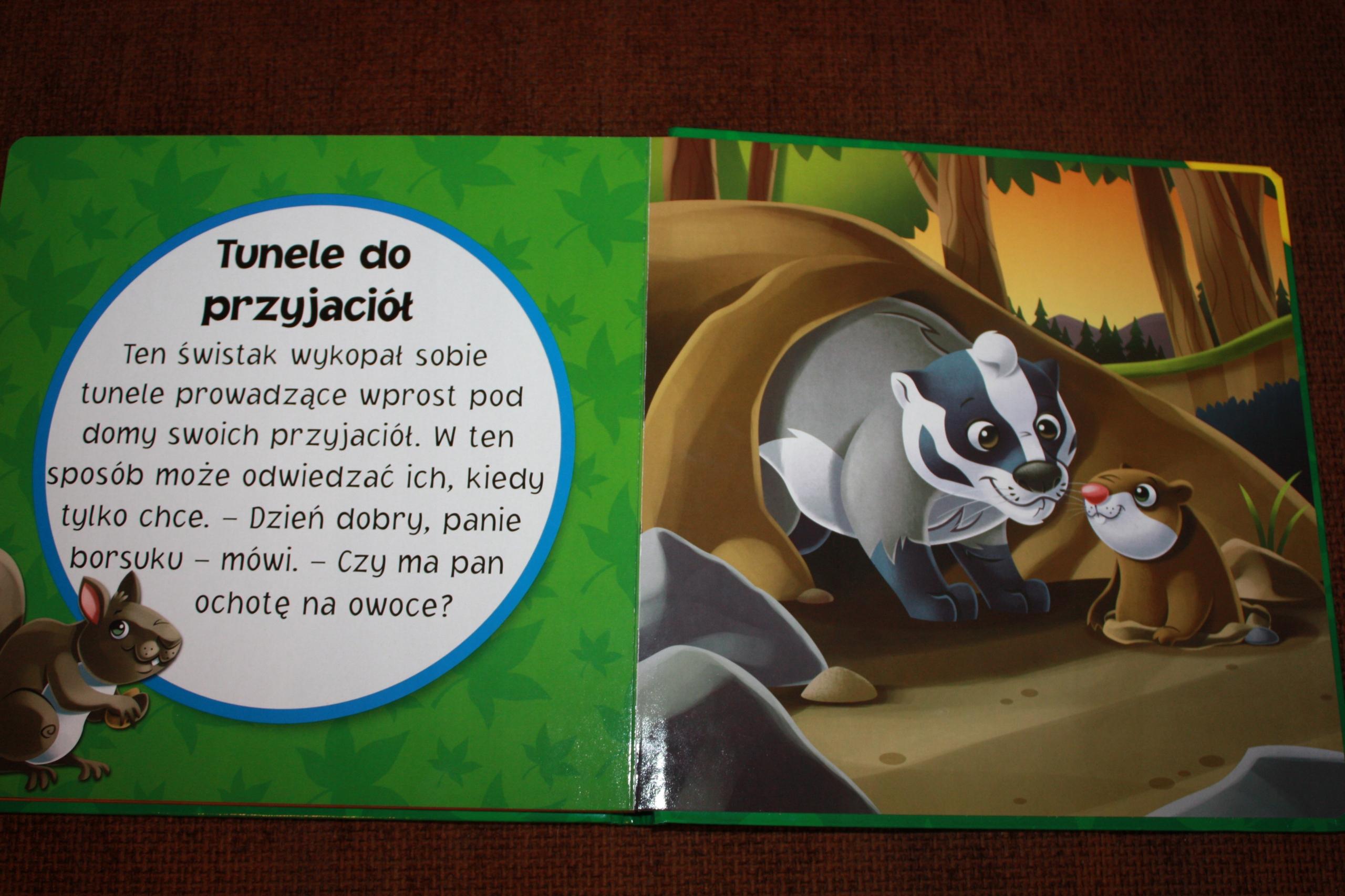 Książka Puzzle Leśni Przyjaciele