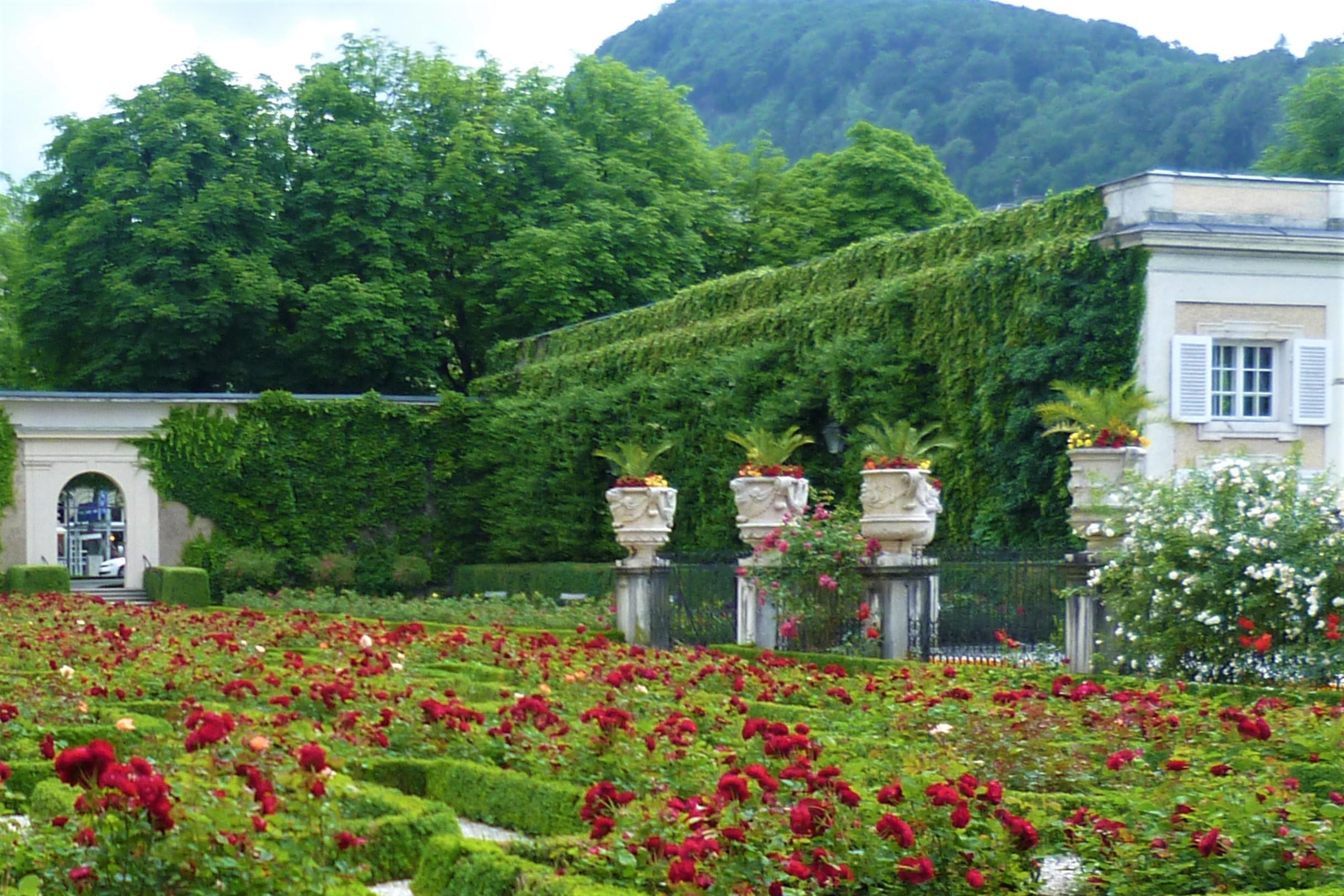 závesné záhrady