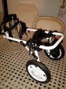 Wózek rehabilitacyj. dla pieska,rozm duże.S+buciki