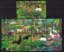 Indonezja`199-zwierzęta domowe**