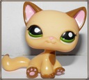 Littlest lps pet shop / kot shorthair