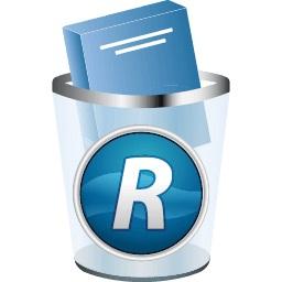 Revo Uninstaller Pro 4 пожизненная Лицензия доставка товаров из Польши и Allegro на русском