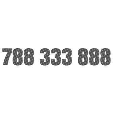 Złoty numer starter 788 333 888 788333888 OKAZJA