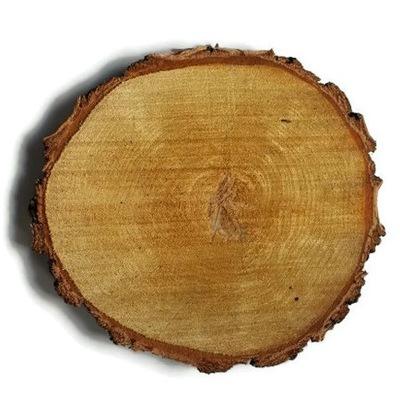 Дешевле сухие пластыри кольца древесины Береза 33 -36