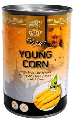 мини Початков Кукурузы 425g GTB Young Corn