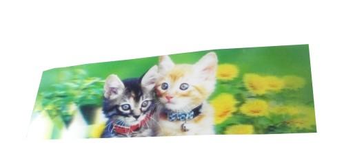 Zakładki Zakładka 3d Kot Koty Małe Rudy Szary 5 15 6852322568